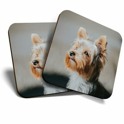 2 X Coasters - Yorkshire Terrier Small Dog Puppy  #46520 • 4.99£