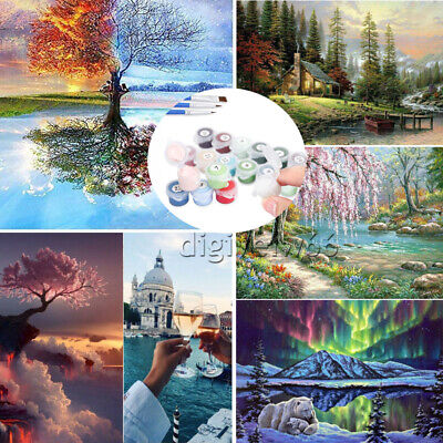 DIY Oil Painting Kit Paint By Numbers Acrylic Beginners Frameless Adult Children • 8.34£
