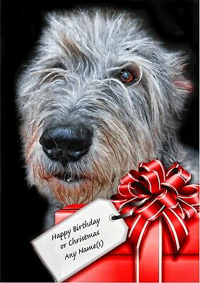 £3.99 • Buy PERSONALISED LURCHER Bedlington Whippet Cross BIRTHDAY Or CHRISTMAS CARD A5 Size