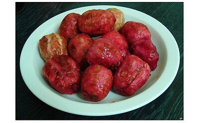 100+ FRESH Prickly Pear / Opuntia Ficus Indica Seeds Red Variety • 2.82£