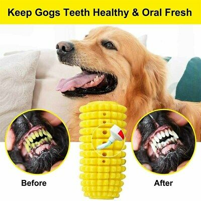 Indestructible-Chew-Toys-Dog-Molar-Bite-Teeth-Cleaning-Interactive-Dental-Care • 8.69£