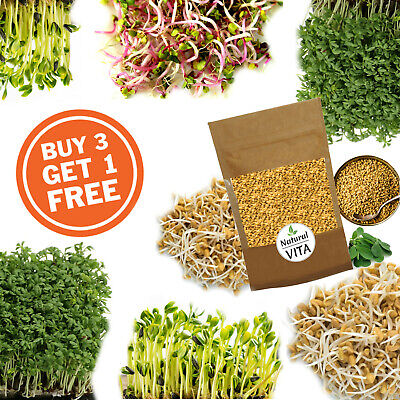 £4.99 • Buy Organic Sprouting Seeds For Sprout | Microgreens | Green Salad | Juice - NON GMO