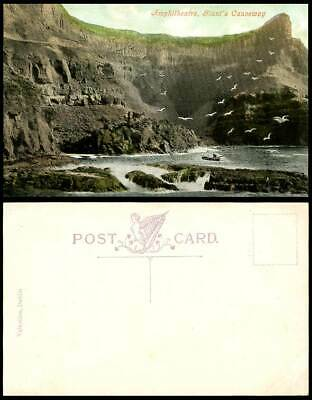 Northern Ireland Amphitheatre Giant's Causeway Birds Boating Old Colour Postcard • 3.99£