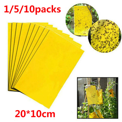 AU6.85 • Buy 1/5/10pc Bulk Sticky Trap Insect Killer Whitefly Thrip Fruit Fly Gnat Leafminer