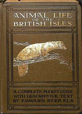 Animal Life Of The British Isles. 1921, Step, Edward, F>L>S, Good Conditio • 17.91£