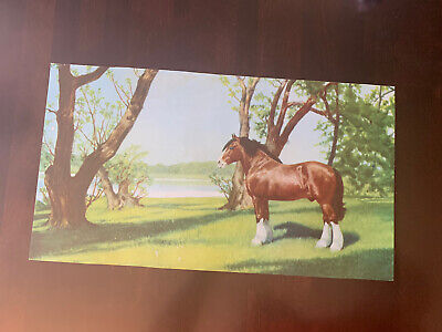 $ CDN39.44 • Buy Vintage Budweiser Sign. Beautiful Scenic View. Clydesdale!  Just The Insert