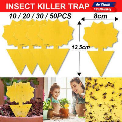 AU6.50 • Buy 10/20/30/50x Dual Sided Sticky Trap Insect Killer Fruit Fly Whitefly Trap Gnat