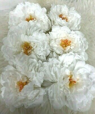 6x Artificial White Peony Flower Heads Bouquet Wedding Party Table Decor • 5.79£