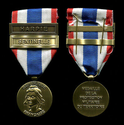 French Foreign Legion Medal For The Military Protection Of The Territory • 18.99£