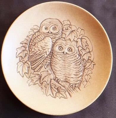 Owl Chicks Poole Stoneware 5  Plate Designed By Barbara Linley Adams • 3£