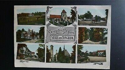 Greetings From Seale And Tongham Multiscene Frith Postcard • 3£