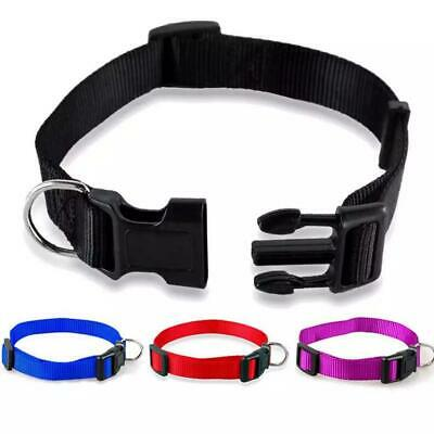 £3.06 • Buy Dog Collar Adjustable Puppy Nylon Strong 4 Sizes Collars Durable Soft 4 Colors