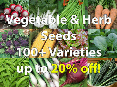 Vegetable & Herb Seeds Mixed Pack 100+ Varieties/Collection/Mix - Only 79p Each! • 0.99£