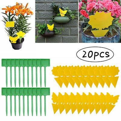 AU10.62 • Buy 20 Pcs Yellow Sticky Trap Insect Killer Whitefly Thrip Fruit Fly Gnat Catcher
