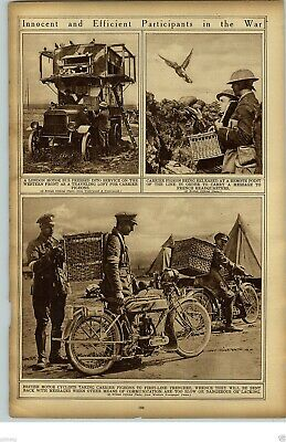 £26.13 • Buy 1919 British Motorcycles Carrier Pigeon Baskets WWI World War I Rotogravure
