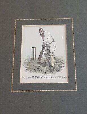 Framed WG Grace Coaching Manual Print - Collection From E18 • 2£