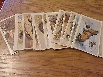 Grandee - British Mammals  - Full Set  30  Cigarette  / Cigar Cards • 2.49£