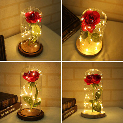 AU22.39 • Buy LED Light Enchanted Eternal Flower Rose In Glass Dome Valentine's Day Gift