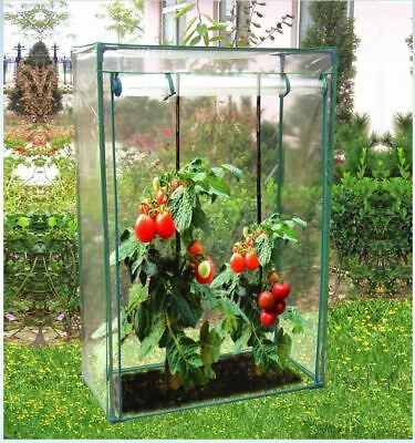 NEW! Mini Growbag Tomato Growhouse Garden Greenhouse With PVC Cover • 16.89£