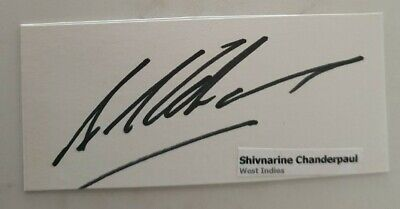 AU7.50 • Buy Shivnarine Chanderpaul Cricket Signed In Person West Indies Test Card