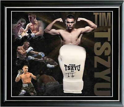 AU599 • Buy Tim Tszyu Hand Signed Boxing Glove Framed Online Certificate Of Authenticity
