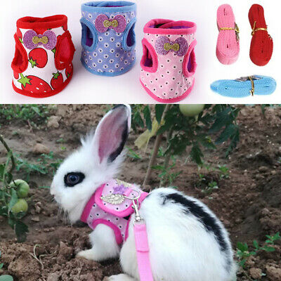 £3.29 • Buy Small Animal Harness Leads Hamster Rabbit Cat Ferrets Squirrel Rat Vest Clothes