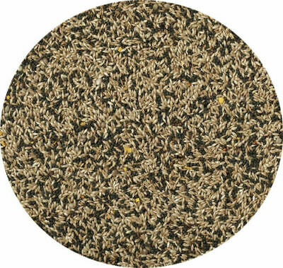 Canary Seed Mixed Canary Food Feed 10kg 5kg 3kg 2kg 1.5kg 1kg 500g 250g  • 2.99£