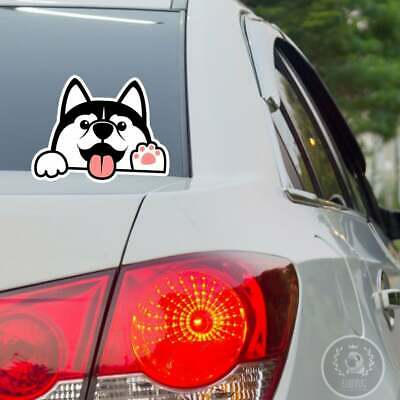 £8.44 • Buy Black White Husky Car Sticker / Vinyl Car Decal Weather Resistant Outdoor Use