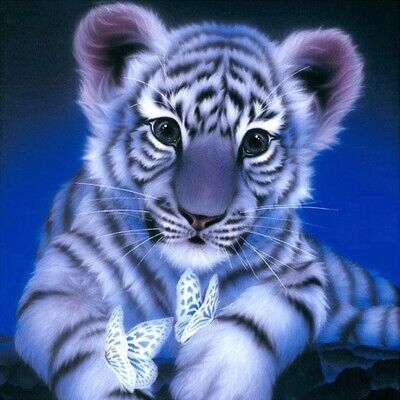 AU5.14 • Buy Tiger Diamond Painting Drill DIY 5D Embroidery Cross Stitch Home Art Decor Tools