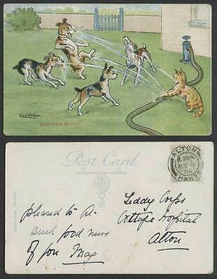 £26.99 • Buy LOUIS WAIN Artist Signed Cat Dog Water Hose Scratching Up Luck 1906 Old Postcard