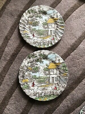 £20 • Buy The Hunter By Myott Permanent Colours Dinner  Plate X 2 Made In England