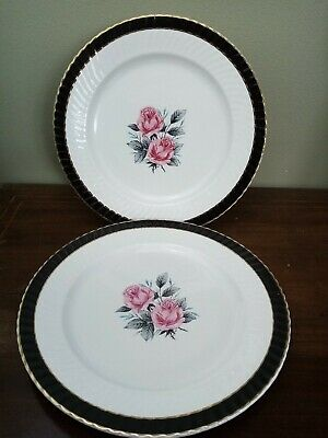 £8.95 • Buy Pair Of Vintage, Barratts Delphatic, 10  Or 26cm Dinner Plates, Pink Rose
