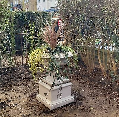 £130 • Buy  Garden Urn Cast-stone Pot  , Large Solid Heavy Planter With Square Plinth