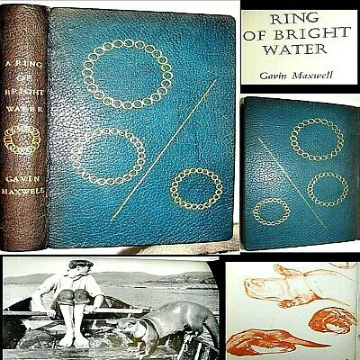 £4.73 • Buy 1960 A Ring Of Bright Water Galvin Maxwell 1st Edition Fine Leather Otter Animal