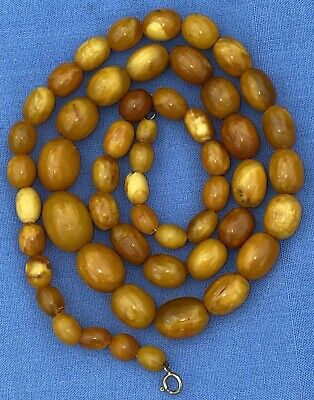 £56 • Buy Beautiful Antique Butterscotch Egg Yolk Amber Bead Necklace 24 Inches Long