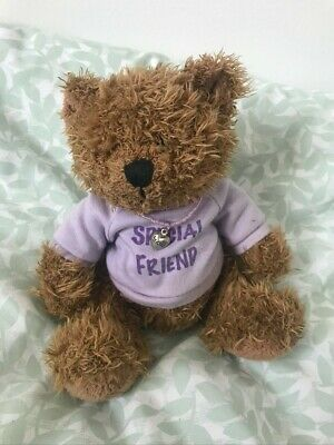 £1.99 • Buy ' Special Friend ' Teddy Bear With Purple Tshirt And 'Friend' Bead Necklace
