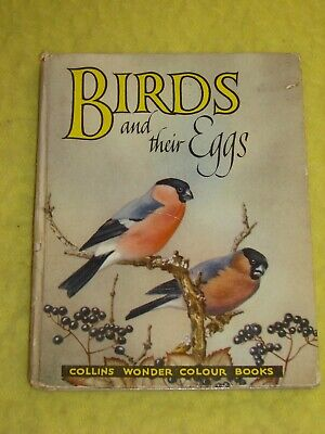 £3 • Buy Birds & Their Eggs, 1960s H/b, Good, Illustrated, Collins Wonder Colour Book