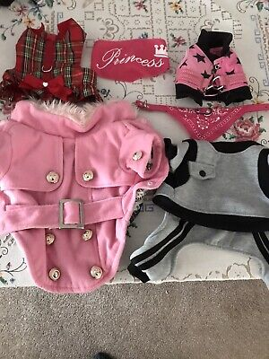 £4.99 • Buy Chihuahua Outfits Bundle