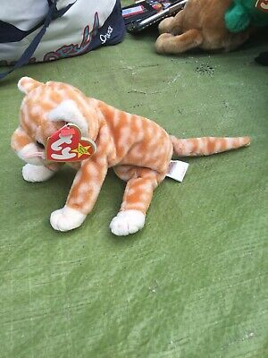 £5 • Buy Amber The Ginger Cat Ty Beanie Babies Baby Soft Toy New With Tags