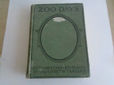 £5 • Buy Antique Book - Zoo Days By Harry Golding 1919 Margaret Tarrant Colour Plates