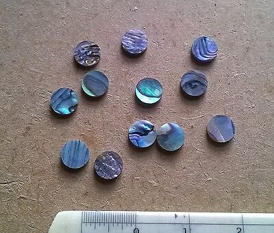 12 PAUA  NEW ZEALAND ABALONE  Luthier Dots  Inlay Fret  Side Marker - All Sizes • 2.99£