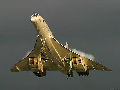 British Airways Concorde Canvas Pictures 16 X20  Take Off Super Wall Art Prints  • 19.99£