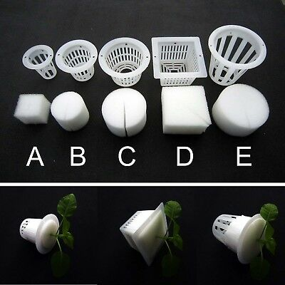 $ CDN5.60 • Buy 10 Clear White Mesh Pot Net Basket + Clone Cloning Collar Foam Insert Hydroponic