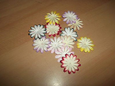 20 Colour Tipped Mulberry Paper Gerbera Daisy Flower Heads 40mm Various Colours • 1.20£