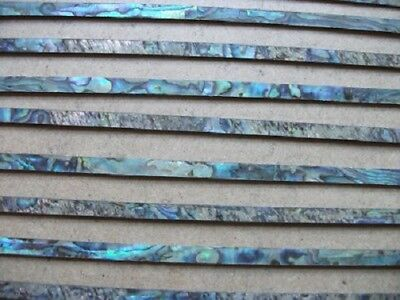 2 Ft  Of 5 Mm Paua / Abalone  Inlay Strip - Purfling  • 15£