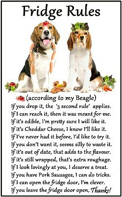 Beagle Gift - Large Fridge Rules Flexible Magnet 6  X 4  For Dog Lovers • 5.95£