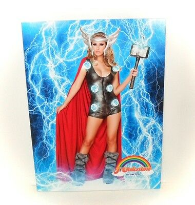 $29.95 • Buy Valentine LINGERIE Costume Cosplay Fashion Sexy Fantasy 100 Page Catalogue 2014