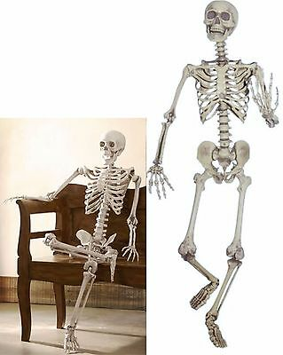 $52.95 • Buy Realistic LIFE-SIZED Posable Skeleton 5ft Halloween In OR Out Door Yard Prop