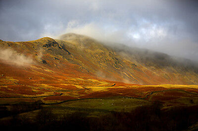 Autumn In The Lake District Canvas Picture 16 X20  Super Landscape Wall Prints • 19.99£