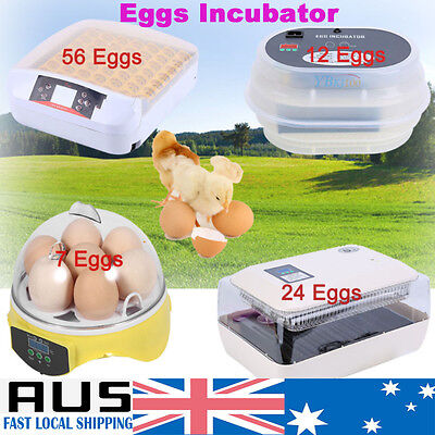 AU23.99 • Buy 7/12/24/56 Eggs Incubator Fully Auto Digital LED Turning Chicken Duck Hatcher